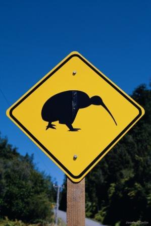 hapeta kiwi sign