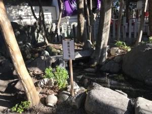 名古屋市北区 初詣 別小江神社