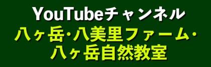 八ヶ岳自然教室 YouTube CHANNEL