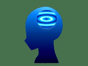 頭脳 頭 限界