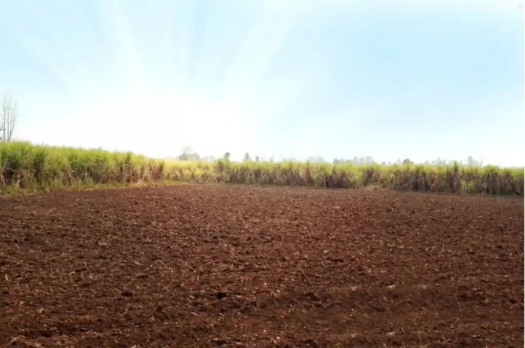 खेत की जमीन