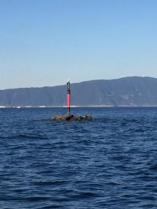 image (17)猪ノ子島