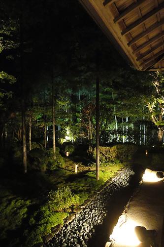 宝泉院庭園ライトアップ3