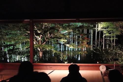 宝泉院庭園ライトアップ5