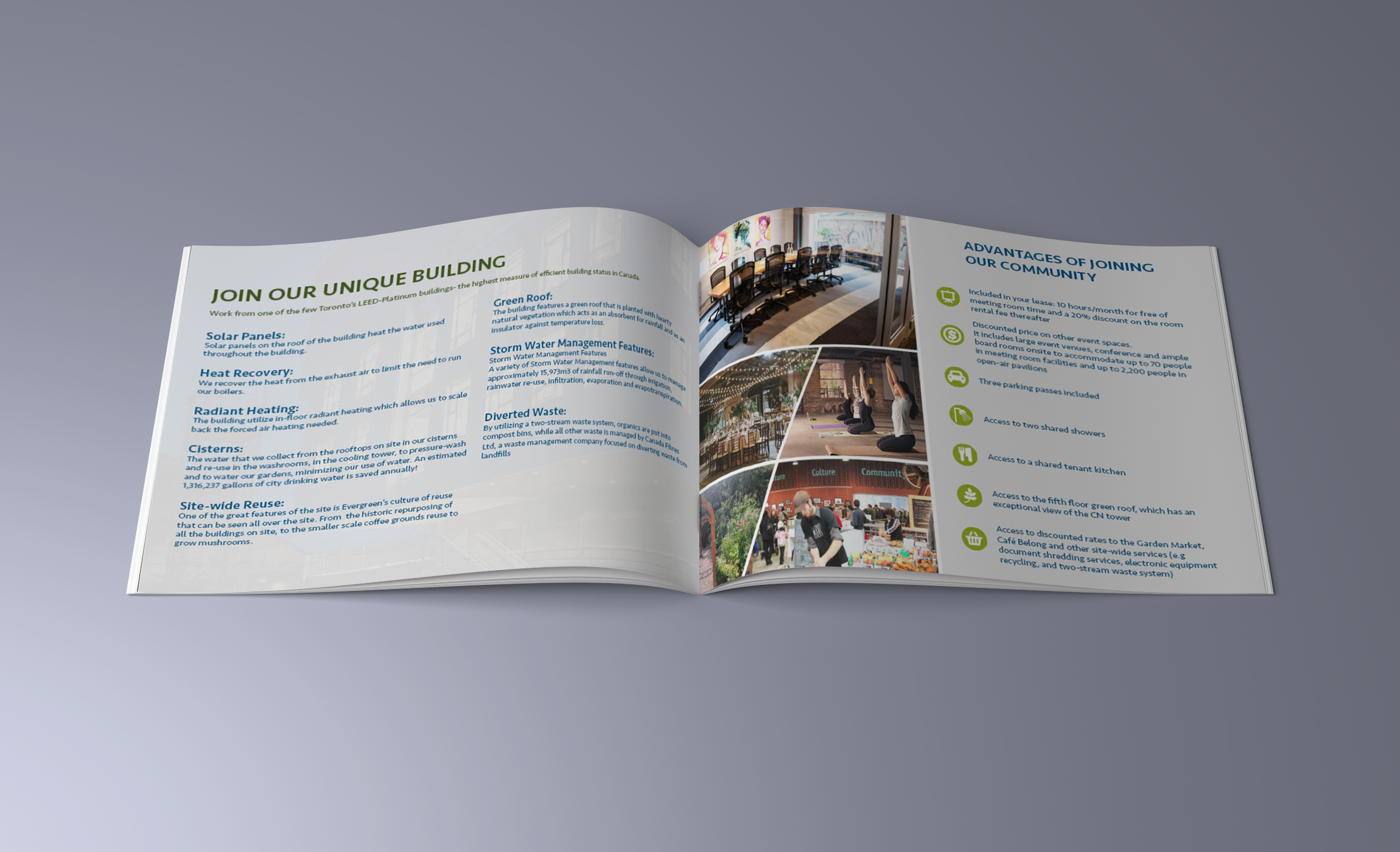 Evergreen brochure layout 2