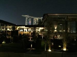 Orgoで素敵すぎる夜景ディナーinシンガポール