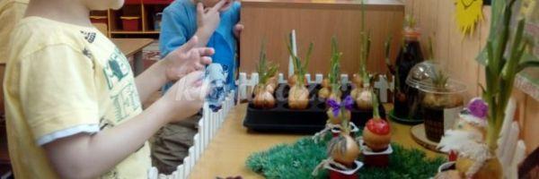 Познавательно - исследовательский проект в детском саду во ...