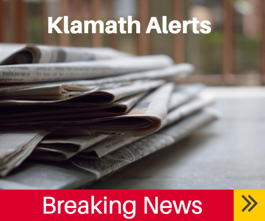 Three New Businesses Coming To Klamath Falls In Old Safeway
