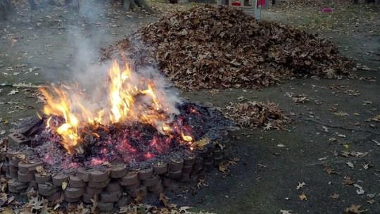 fire-pit-183127_640