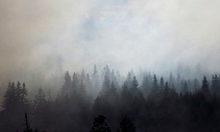 Wildfire smoke is a local public health concern