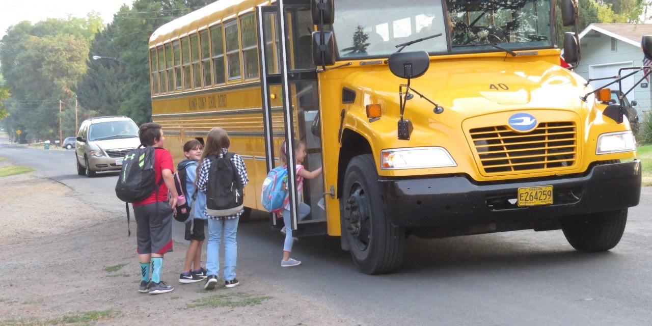 Stop for school buses; slow down in school zones