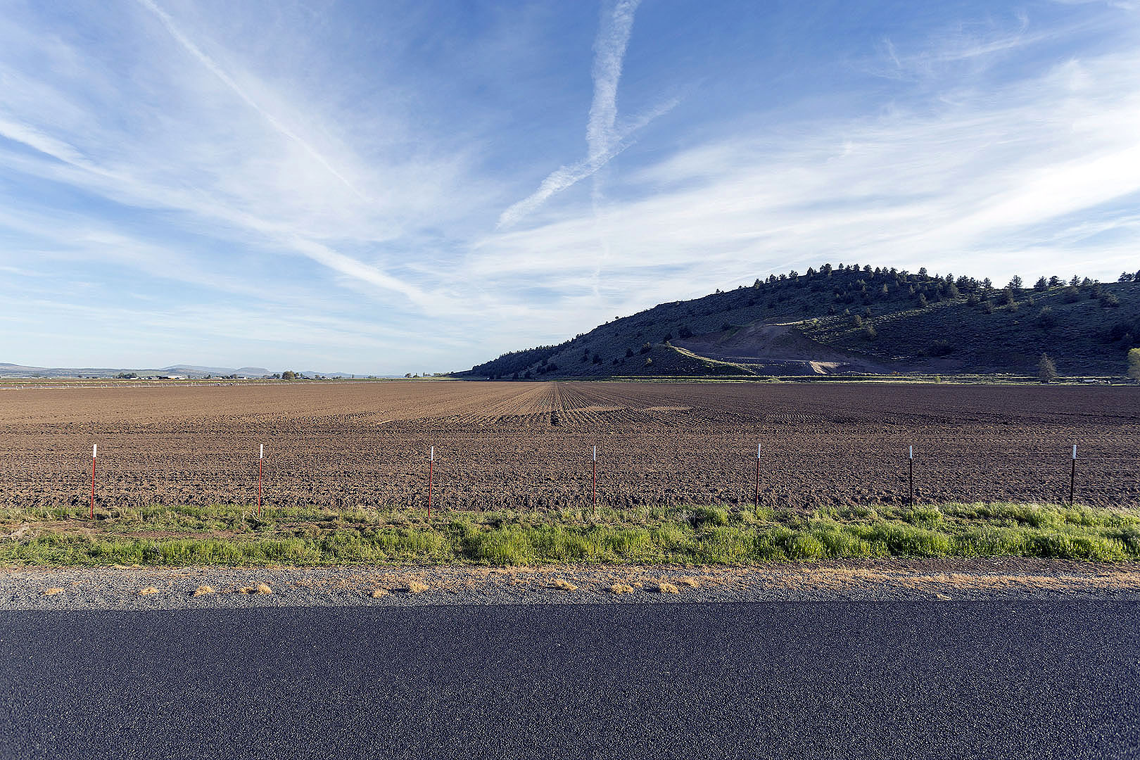 Crop Fields in Klamath County