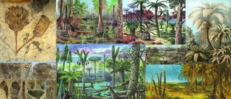Relict plants