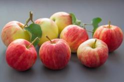 de basis van de goed appelazijn: biologische appels