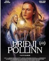 Þriðji póllinn plakat