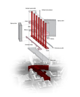 diagram of the circulation