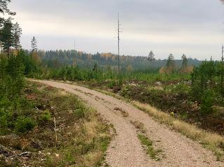 vandringsväg