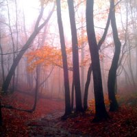 """From The KlashArchive-""""Mist"""""""