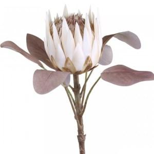 Chic Antique Protea blomst - creme
