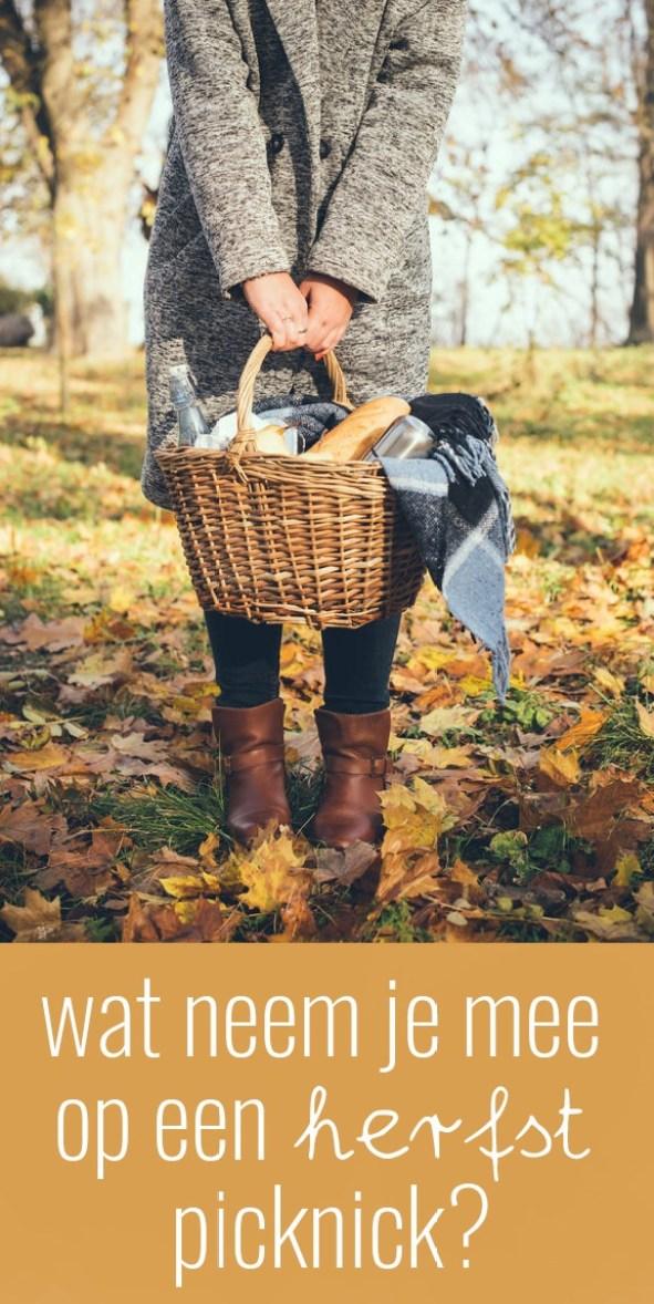 Wat neem je mee op een herfst picknick?