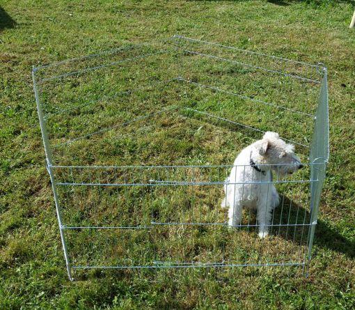 Kojec dla psa 100x60-5