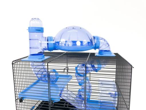 Niebieskie wyposażenie klatki Rocky dla chomika