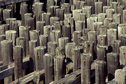 wood lines - view from American Merchant Mariner's Memorial