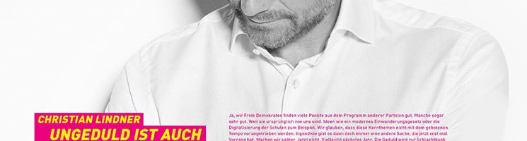 Was sind die Gründe der FDP für eine politische Position?