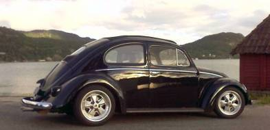 3) Auf und Davon: Käfer im königlichen Norwegen, Land der Fjorde, Farne, Flechten und des Motorsports. (Bild mit freundlicher Genehmigung des Besitzers)