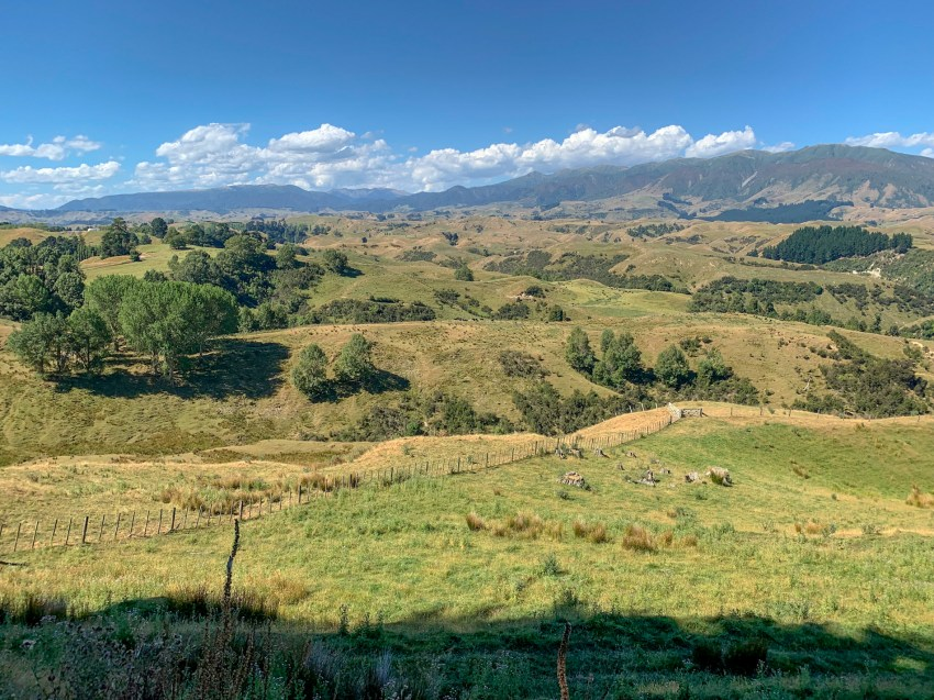 Expansive view from elevated vantage point over undulating farm country and a mountain range in the distance