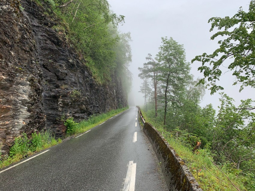 Climb into the forest past the village of Ulvik