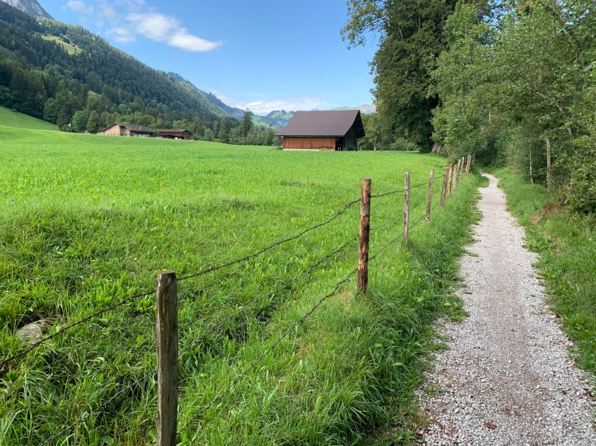 Quiet roads and gravel paths in the Simmental