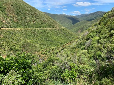 Looking down valley, hills covered in dense green brush vegetation. A single trail visibly cut into the side of hill.