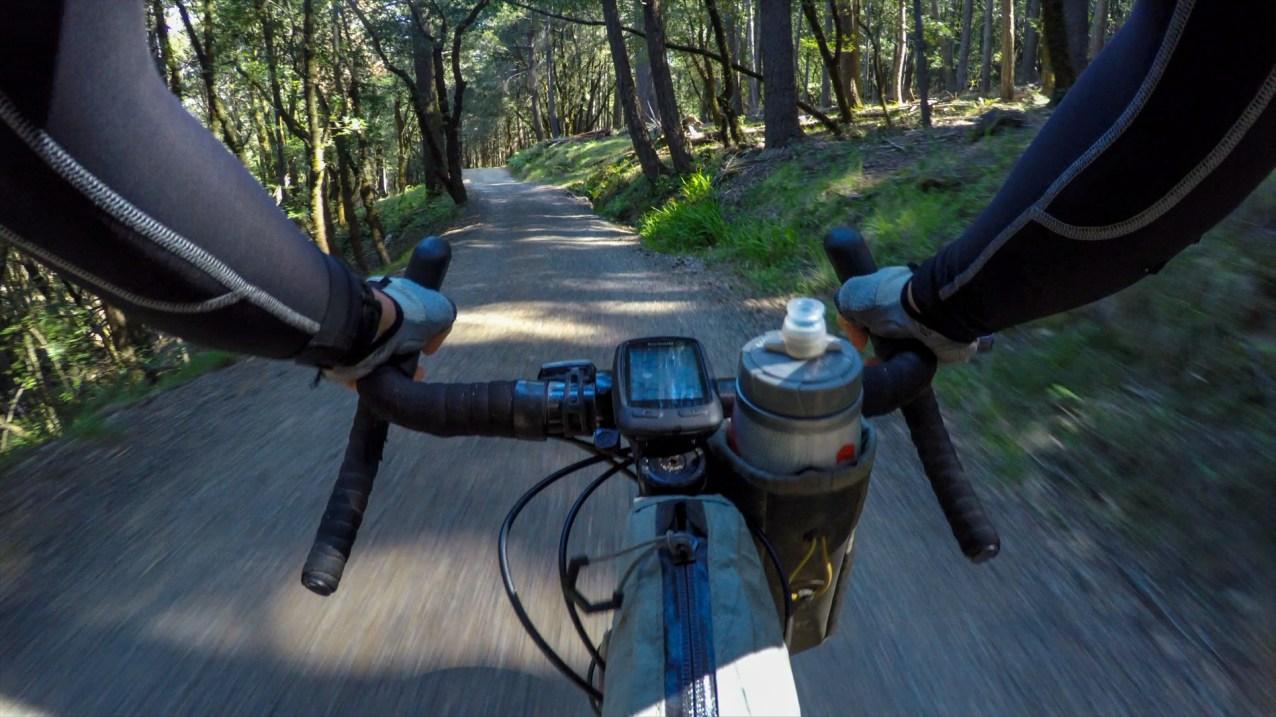 Exhilarating downhill through the woods on Lagunitas-Rock Spring Road.