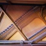 geöffnetes Klavier Saiten Resonanzboden