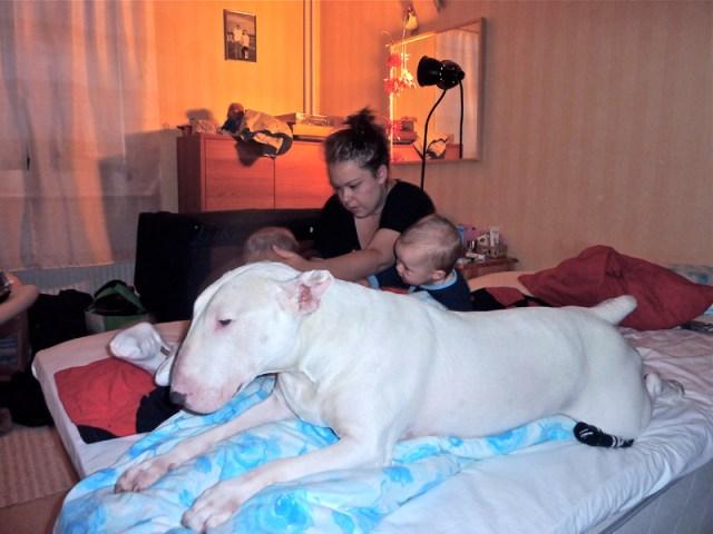 Mys och stök i mummuos säng