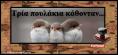 3 πουλάκια κάθονταν