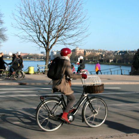 Dronning Louises fietser 41