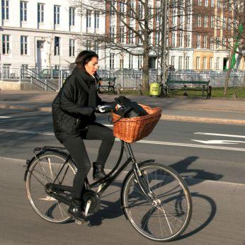 Dronning Louises fietser 40