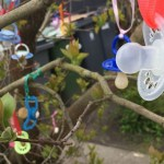 spenen in boom
