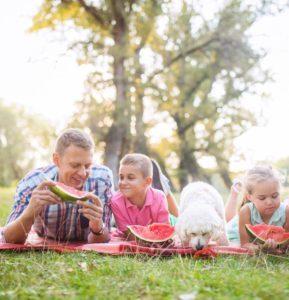 picknicken in een pretpark met kinderen