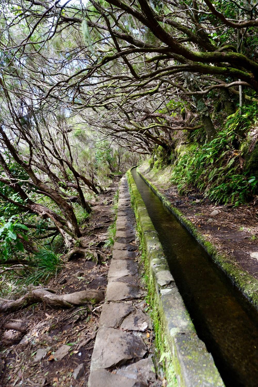 Bewässerungskanäle - Levadas genannt | Copyright: Anja Heuer