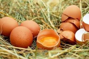Kann Man Eier Einfrieren Hier Erfahren Sie Mehr