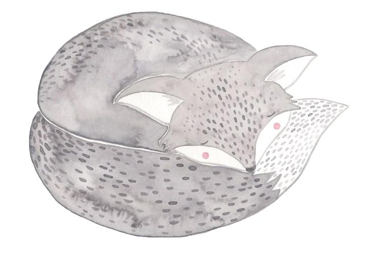 kleinernordfuchs Neugeborenenfotos Fuchs schlafen Babyfotos Fotografin Michaela Klose Beilstein