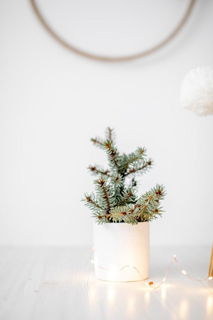 Weihnachtsfotos 2018, Fotogeschenk, Fotostudio
