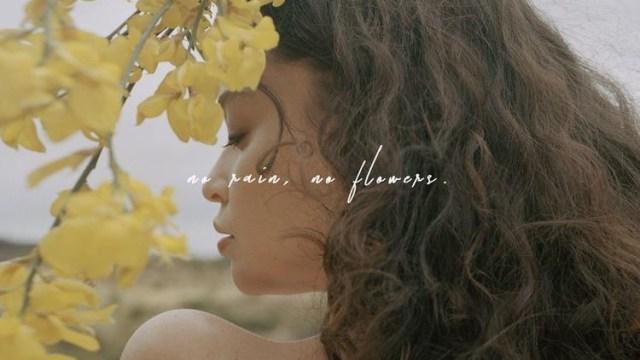 No Rain No Flowers Cover