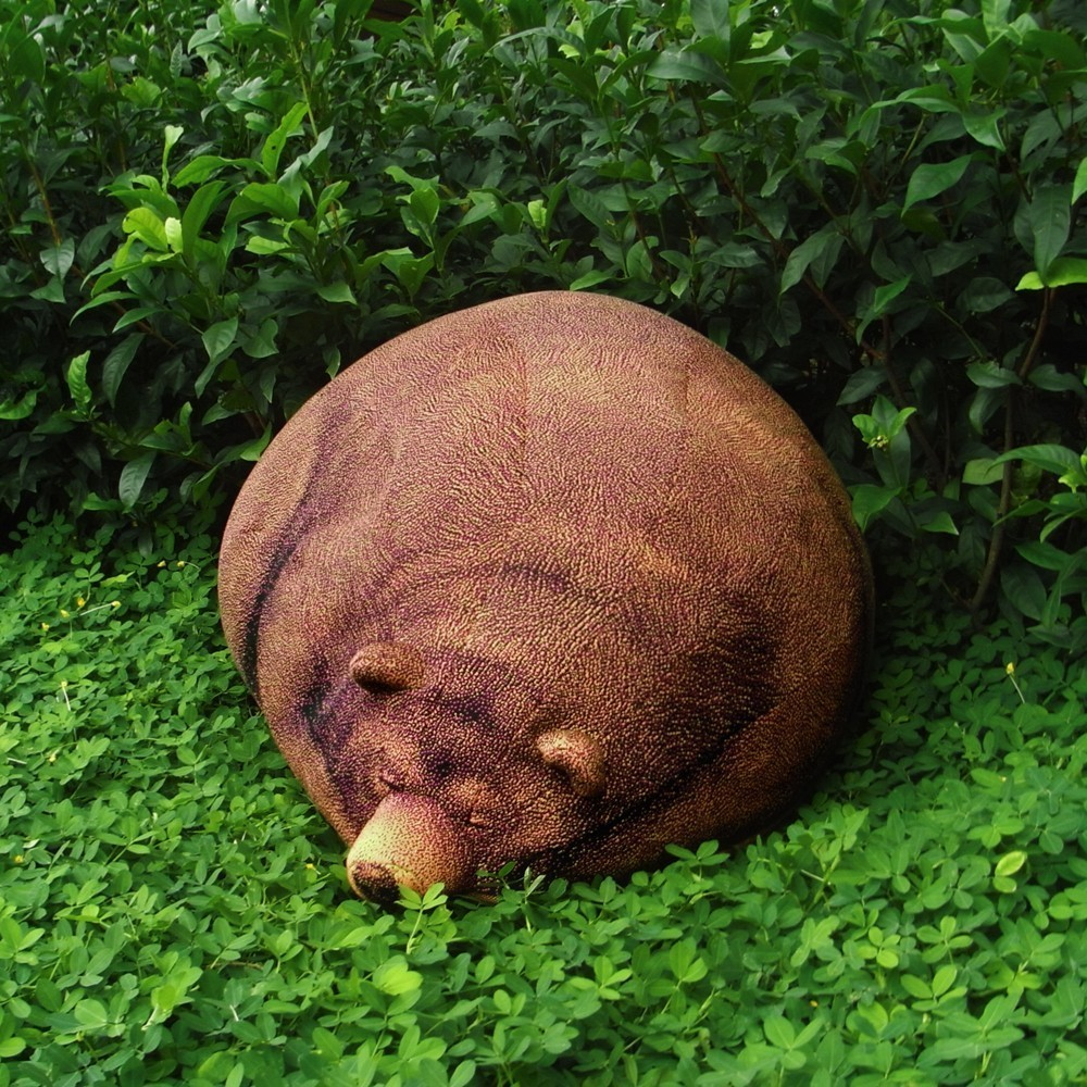 Schlafender Grizzly : gemütlich und absolut friedlich