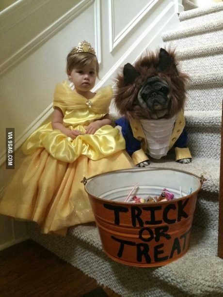 Disney Beauty and the Beast Kids and Dog Costume via Pinterest