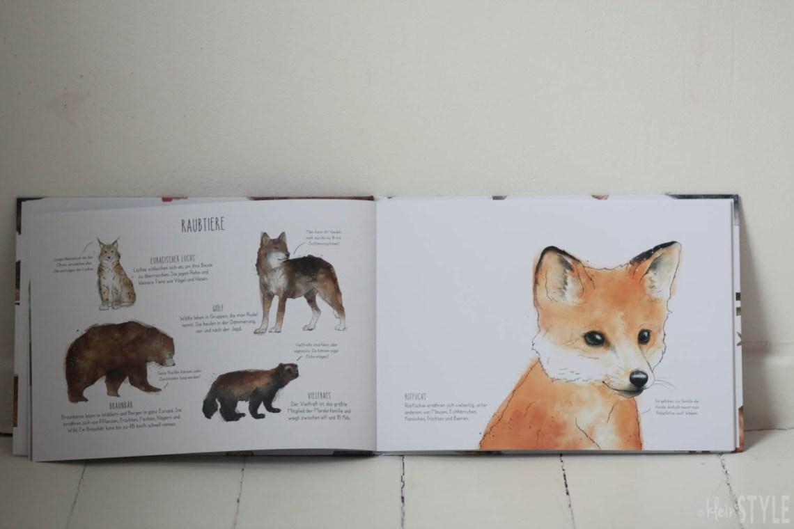 Bilderbuch Die Tierwelt Europas Amy Hamilton by kleinstyle.com