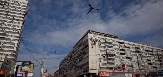 Соотечественники все чаще выбирают для переселения Волгоградскую область